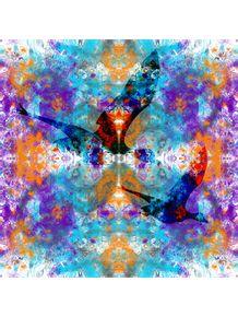 voando-em-cores
