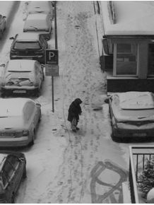 lost-in-the-snow