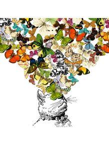 gato-borboleta