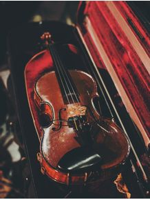 violino-em-veludo-vermelho