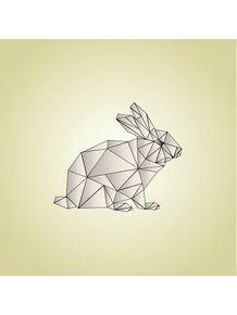 geometric-rabbit