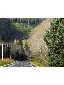 road-bc