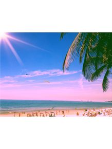beach-palm-day