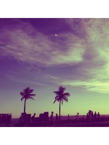purple-palmtrees