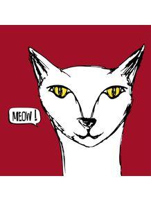 big-meow