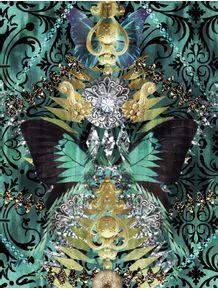 borboleta-arabesco