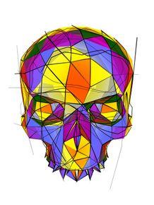 sketched-skull