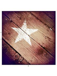 star-santa-monica-pier