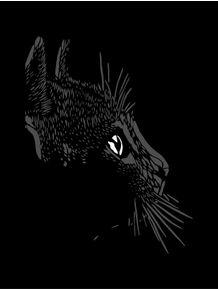 gato-da-sorte