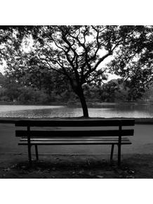 banco-no-parque