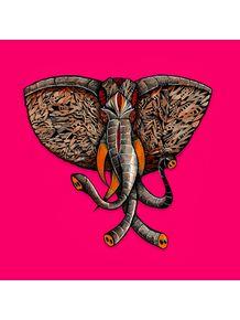 elephant-iii