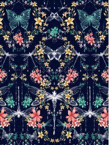 libelulas-e-borboletas