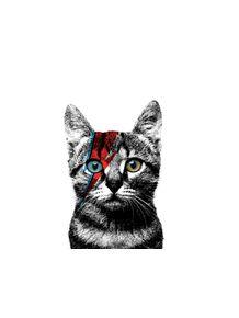 cat-bowie