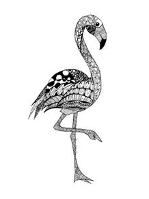 flamingo-negro