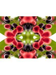 kaledoscopic-flower