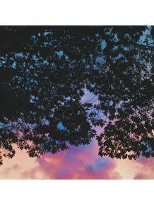 sky-and-tree