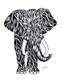 elefante-pb