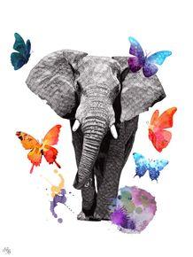 leveza-de-um-elefante