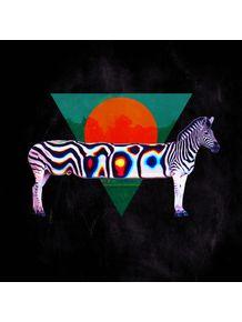 zebra-iii