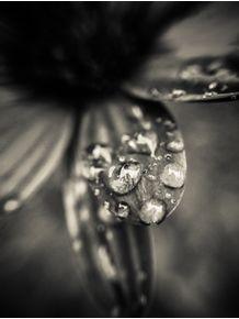 depois-da-chuva-2