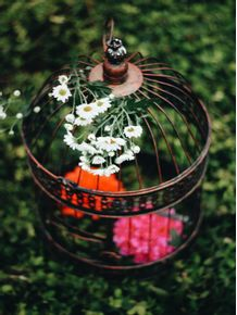 flores-na-gaiola-2