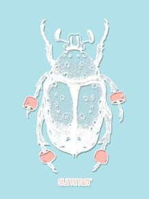 summer-beetle