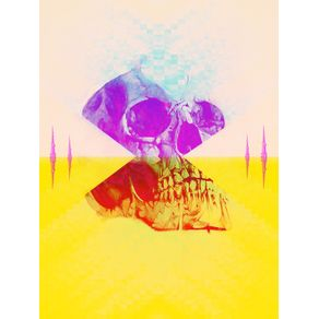 geometrizando-skull