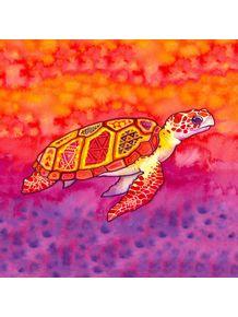 tartaruga-abstrato