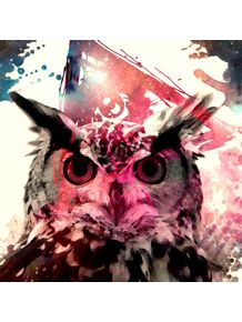 owl-and-pink