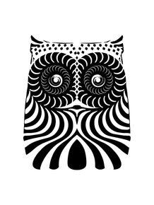 owl--pb-ii