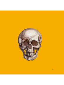 cranio-1
