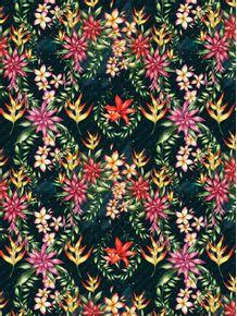 flores-da-amazonia
