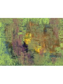 floresta-pos-chuva