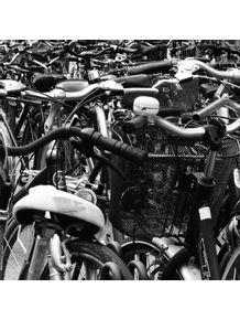 bikes-nl