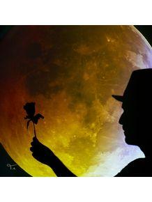 rosa-ao-eclipse