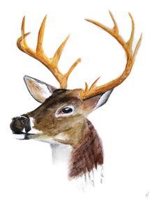 watercolor-deer