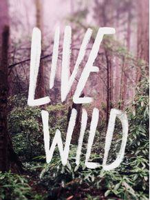 live-wild