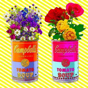 campbells-florido