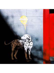 dalmatian-wall