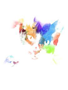 aquarela-de-gato