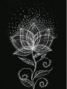 lotus-black