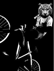 tiger-bike