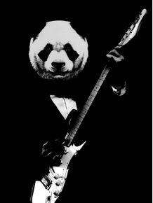 rock-panda