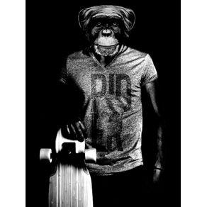 monkey-rider-sk