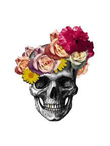 skull-e-flores