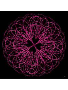 trevo-rosa