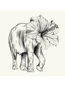 elefante-eleflor
