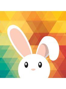 my-rabbit-one