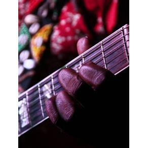 quadro-guitar-roots