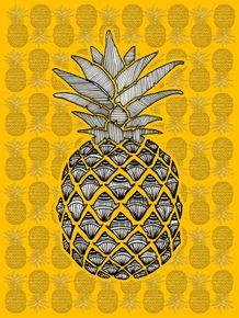 quadro-abacaxi